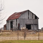 Une ferme (presque) abandonnée sur l'île de Wolfe