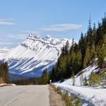 La highway 93 nous offre des paysages subliment (vue sur le Mont Wilson ?!)