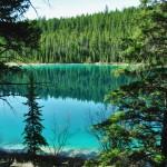 La forêt se reflète sur les eaux calmes des lacs de montagne - Jasper