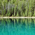 Camaïeux de verts dans la Vallée des Cinq Lacs