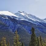 Sommet enneigé de l'un des Mont Rundle (il y en a 4 !)