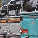 Vieux bus publics définitivement stationnés à Sandon