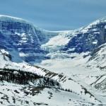 Vue en plan large du Columbia Icefield au coeur de la Route des Glaciers