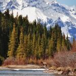La Bow River avec en arrière plan les Rocheuses canadiennes encore bien enneigées