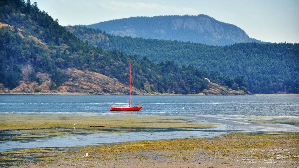 Voilier dans la baie de Cowichan à marée basse... Île de Vancouver - Canada