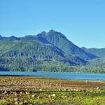 Contrastes éclatants entre le vert des algues, des forêts et le rouge de la plage - BC, Canada