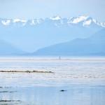 Les montagnes de Port Angeles aux USA - vue depuis l'île de Vancouver