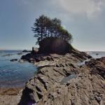 Les rochers sortent de l'eau tels des lames - Botanical Beach, Canada