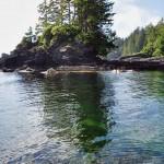 L'eau du Pacifique est comme toujours transparente - Botanical Beach