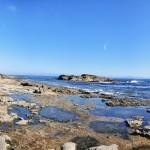 """Vue panoramique des """"pools"""" de Botanical Beach"""