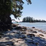 Box Island et son sable blanc, on croirait les tropique - Vancouver Island
