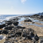 Roche volcanique à Botanical Beach