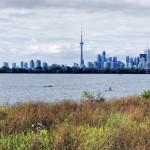 Vue panoramique de Toronto depuis Thompson Park