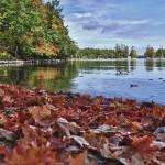 Début d'automne au Charleston Lake