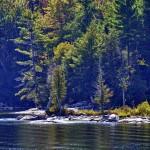 La nature, paisible - Charleston Lake Provincial Park