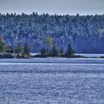 Cabane et sapins - l'imagerie du Canada dans toute sa splendeur !